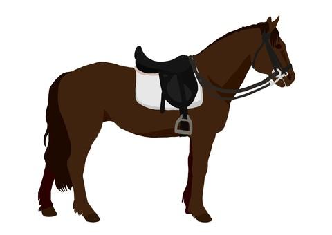 Baba equestrian equestrian (black fur)