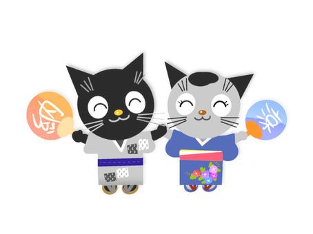 Yukata cat