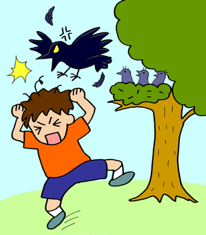 People being attacked by a crow
