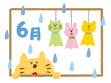 Cat on a rainy day
