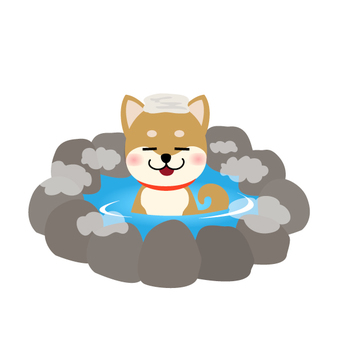 Dog and hot spring