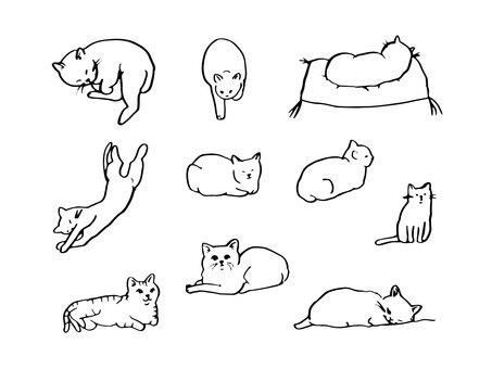 Monochrome cat