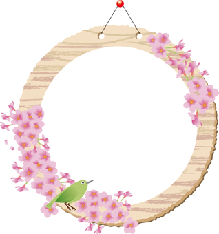 Cherry blossom full of wood grain ___ circle