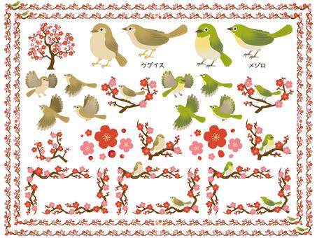 梅とウグイスとメジロ/まとめセット