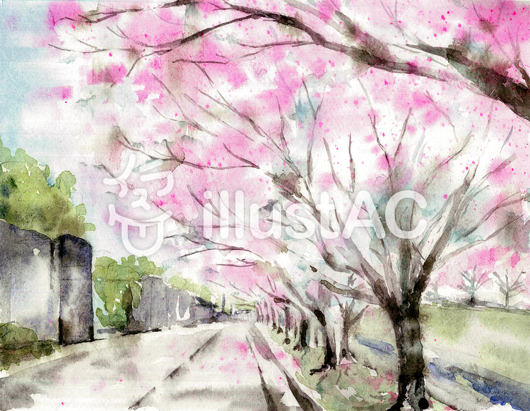 桜並木 風景画2イラスト No 1387216無料イラストならイラストac