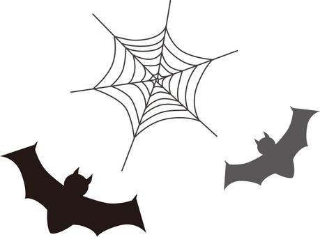 Bats and spider webs