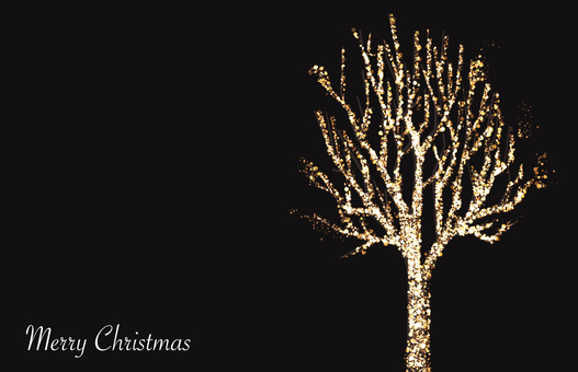 Illuminations of street trees 1