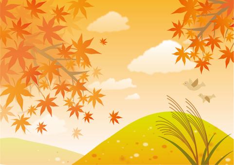 가을의 풍경