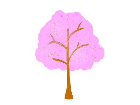Cherry tree rough