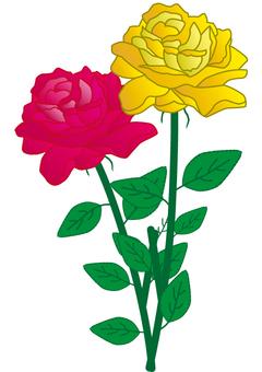黄色いバラ・赤い薔薇