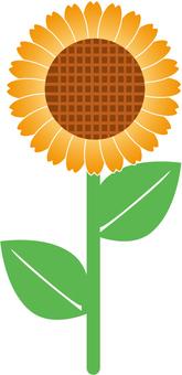 Sunflower icon - sunflower ~
