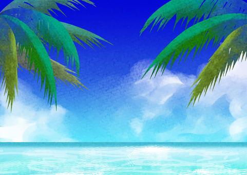 Sea, sky and palm