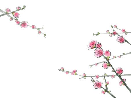복숭아 꽃 6