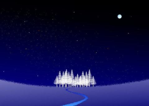 겨울 밤하늘