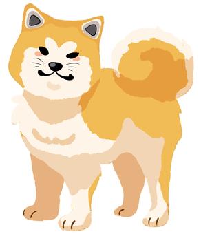 秋田犬(無主線)