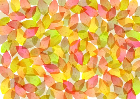 Fall image material 74