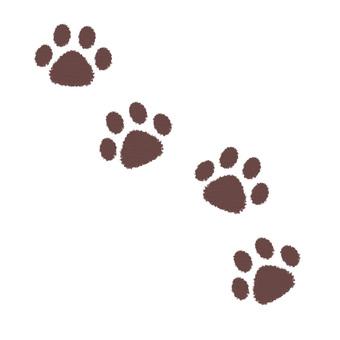Dog footprint - multiple