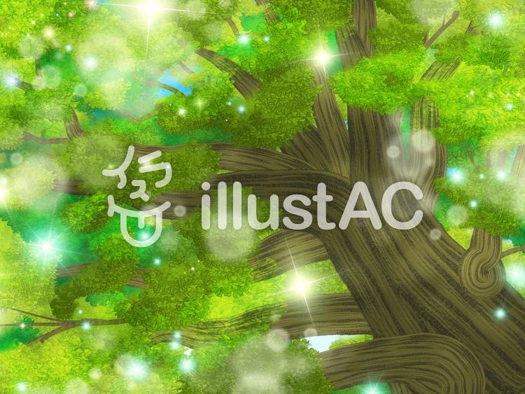 見上げる木のイラスト