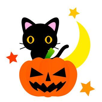 할로윈 검은 고양이 호박 랜턴