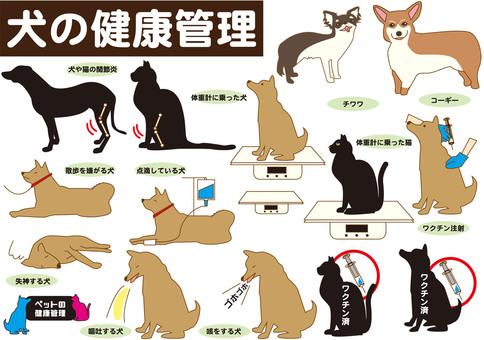 Canine (Cat) Health Management