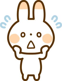 초조해 토끼