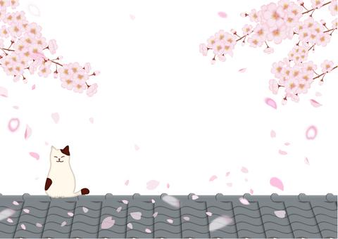 桜と猫と屋根瓦