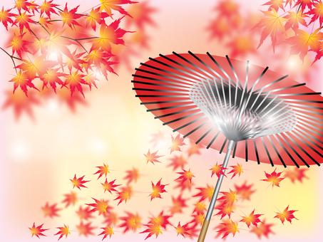 Maple _ and umbrella 2