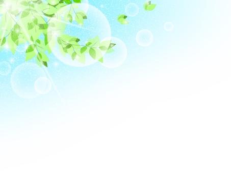 Refreshing fresh green