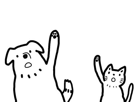 Dog cat line drawing monotone