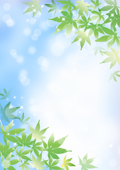 Maple _ sky background _ vertical type