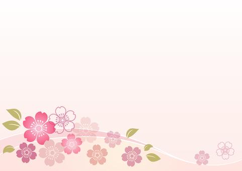 Cherry blossom material 143