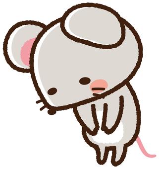 쥐 군 <인사>
