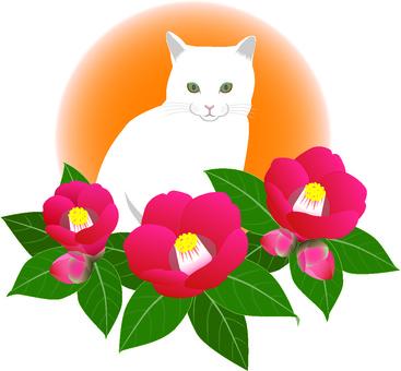 Camellia and cat