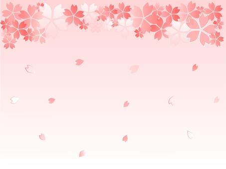 벚꽃 프레임 (위) 밝은 핑크