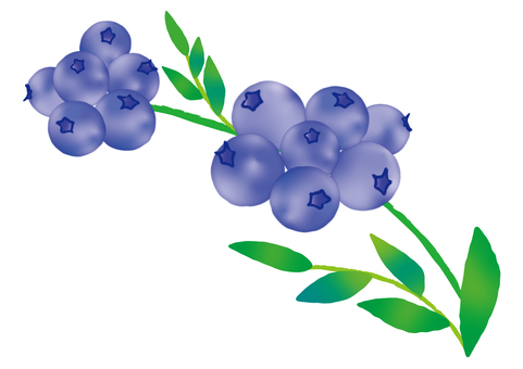 Blueberry One branch watercolor style