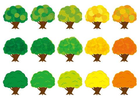 Tree (1)