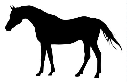 Silhouette - Horse 01