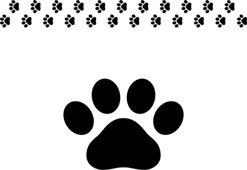 Footprint c