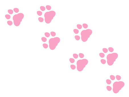 Pink paws footprints