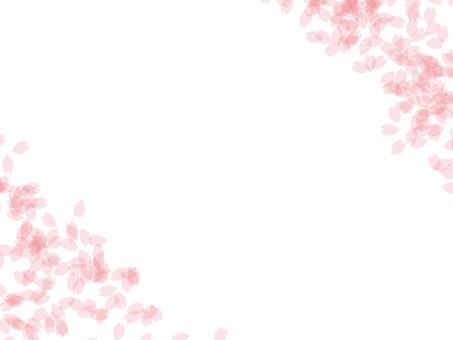 Cherry blossom texture 13