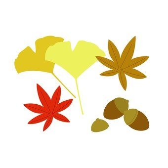 落葉和橡子