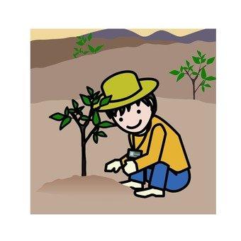 Forest volunteers