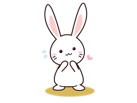 Usagi (Please!)
