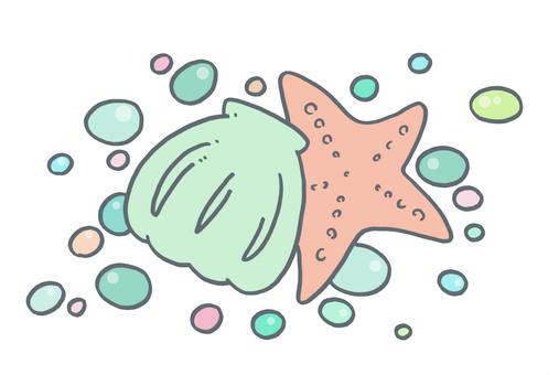 Shellfish and starfish