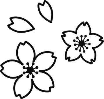 Cherry pictogram