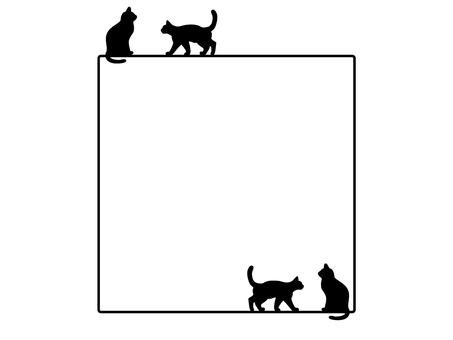 Square square frame cat