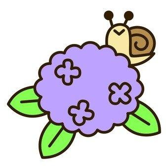 Rainy season - Hydrangea and snail
