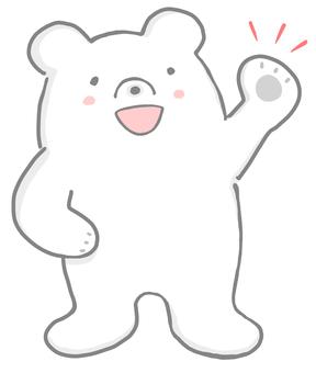 Healthy white bear 2