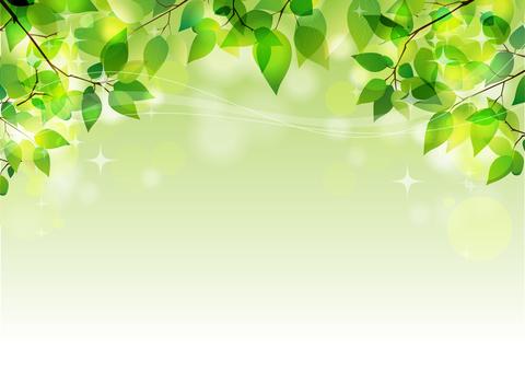 Glittery fresh green (header)