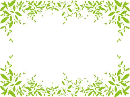 Leaf frame of leaves